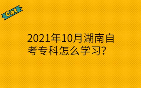 2021年10月湖南自考专科